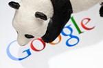 Google анонсировал 19-й апдейт алгоритма Panda