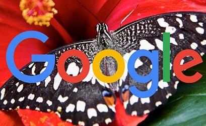 Google: объявления в верхней части страницы поиска не рассматриваются как негативный опыт