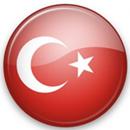 Яндекс планирует экспансию в Турцию
