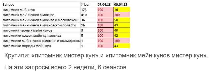 Смежные запросы в Яндексе.png