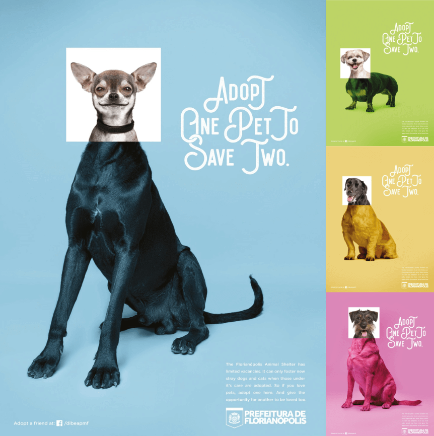 Реклама от бразильского приюта для животных.png