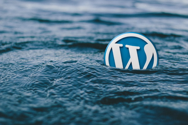 WordPress запретил ссылки из документации на коммерческие сайты