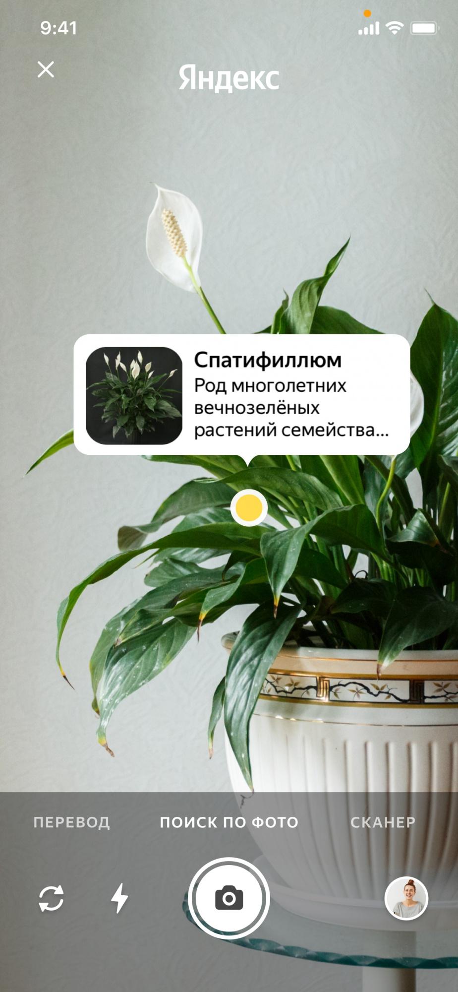 Поиск по фото_растение
