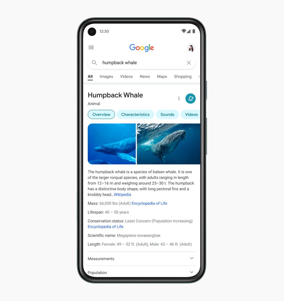 Google представил новый дизайн мобильной выдачи