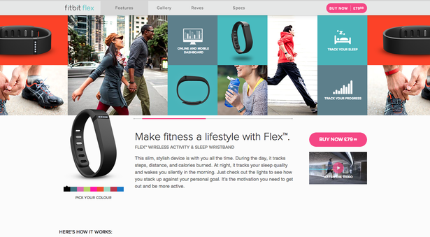 fitbit_flex_1_-blog-full.png