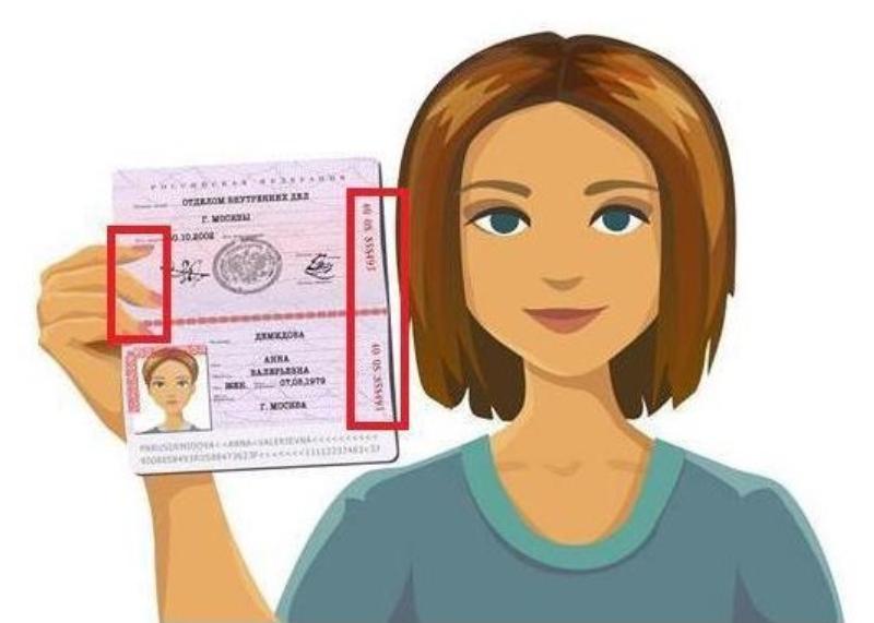 Блогеры Дзена теперь обязаны высылать селфи с паспортом
