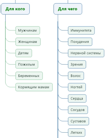 Хорошая структура сайта косметики и лечебных средств 1.png