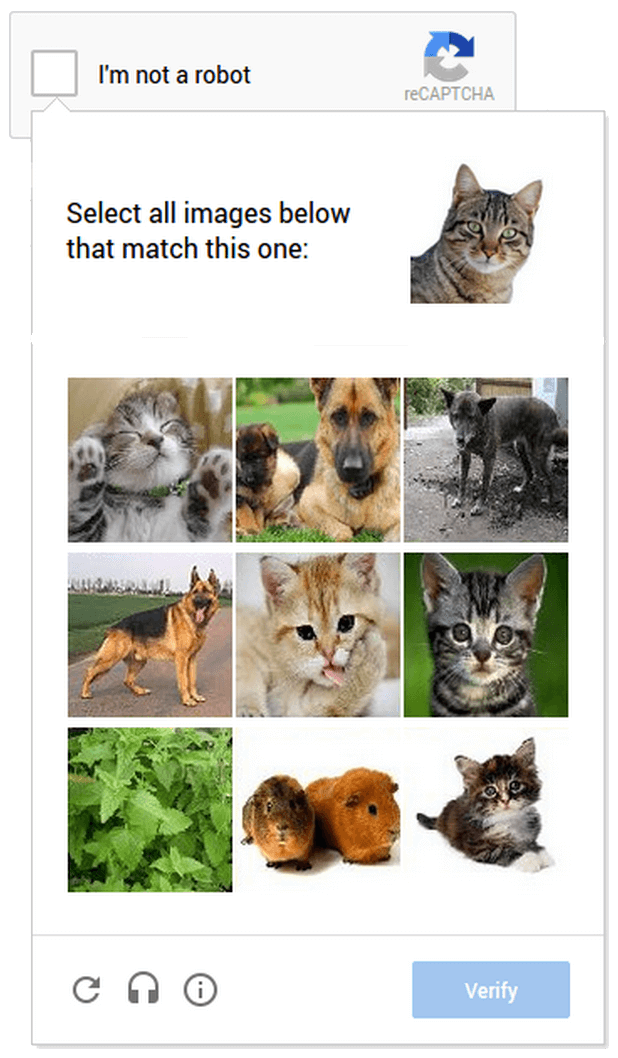 cat_captcha.png