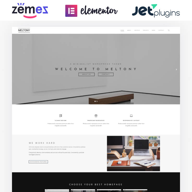 WordPress-шаблон Meltony – Minimalist for Any Businesses