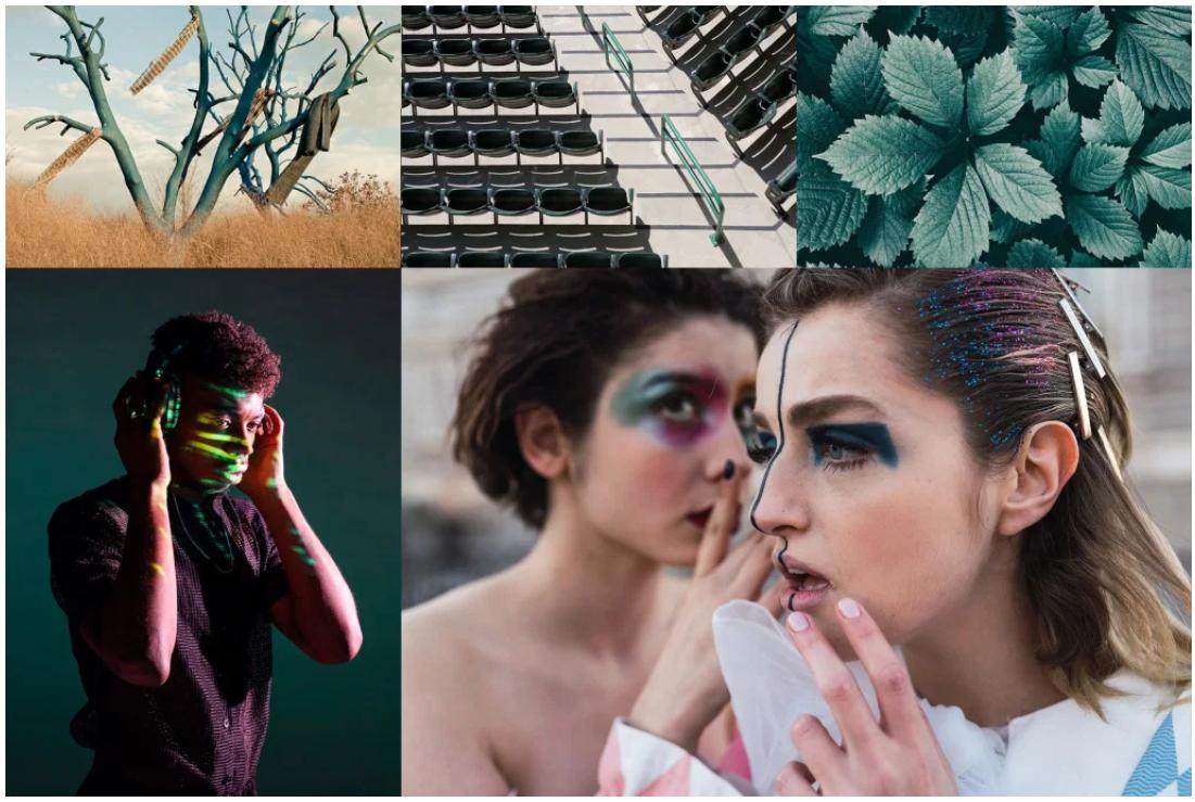 Цветовые тренды 2021 года от Shutterstock