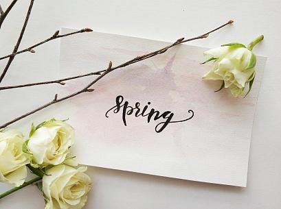 Планы на неделю 26 марта - 1 апреля 2018: куда пойти учиться?